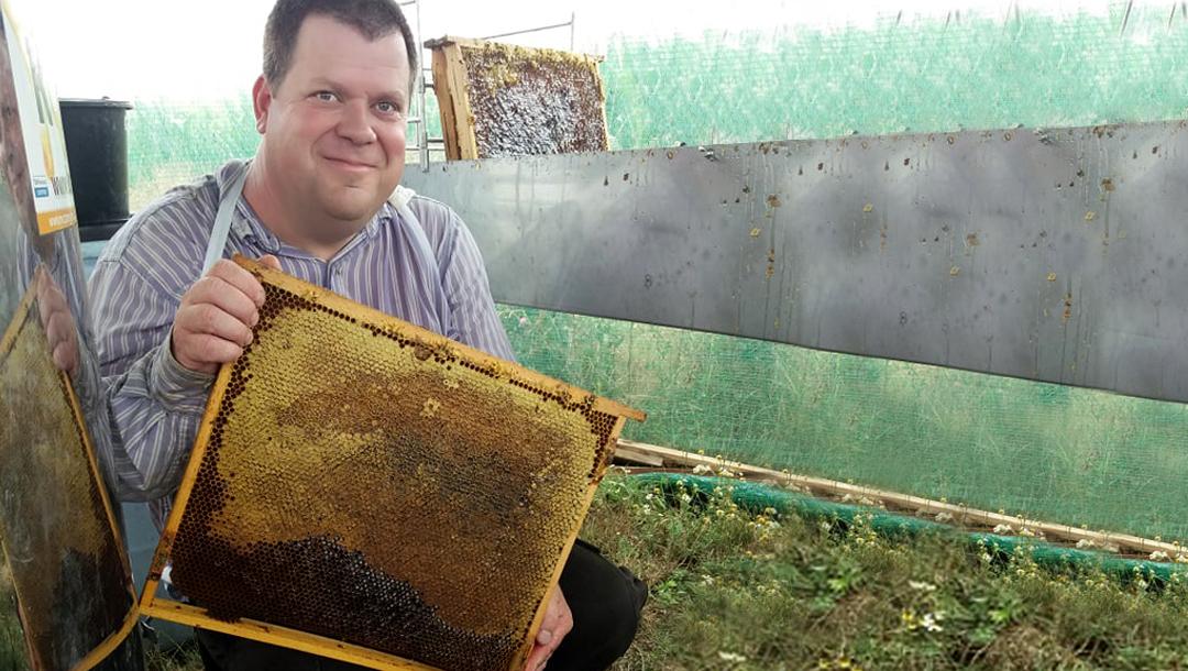 Termelői magyar mézet webshopból? A Váraljai Méhészet története
